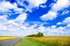 fields дорога Стоковые Изображения