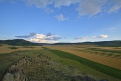 fields лето стоковые фото