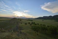 fields лето стоковое изображение