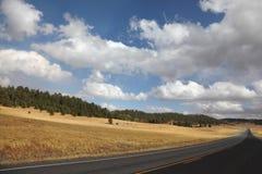 fields желтый цвет дороги Стоковое Изображение