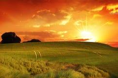 fields заход солнца Стоковое Изображение