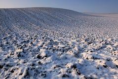 fields зима Стоковое Фото