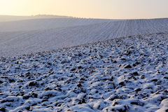 fields зима Стоковое фото RF
