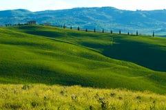 fields итальянка Стоковые Изображения RF