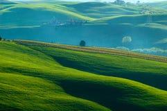 fields итальянка Стоковое Фото