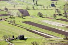 fields итальянка Стоковая Фотография RF