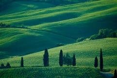 fields итальянка Стоковое фото RF