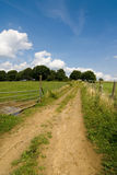 fields лужки Стоковая Фотография RF