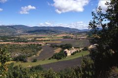 fields панорама лаванды Стоковая Фотография RF