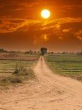 fields путь Стоковые Изображения