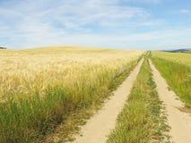 fields путь Стоковая Фотография
