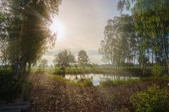Fields солнечность утра Стоковая Фотография RF