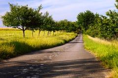 Fields дорога асфальта Стоковая Фотография RF