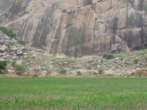 fields Stockbild