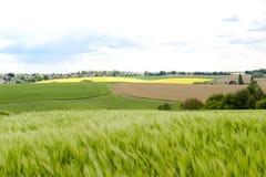 предпосылка fields гора лужков Стоковые Фото