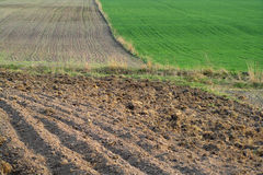Fields. Of earth Royalty Free Stock Photography
