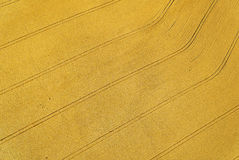 Fields. Aerial view of fields with tracks Stock Photo