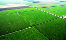 Fields from the air Stock Photography
