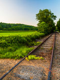 Fields along railroad tracks in York County, PA Royalty Free Stock Photography