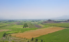 Fields in the Ararat Valley in the Armenian Highlands. Stock Images