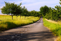 Fields Asphalt Road Royalty Free Stock Photography