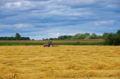 fields att meja för hö Arkivfoton