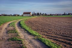 Fields in Austria. Road among fields near Rabensburg, small town in Austria near the Slovakian border stock photo