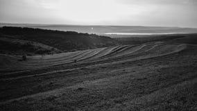 Fields b/w Стоковые Фото