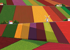 Fields. Vector background with colorful harvesting fields Stock Image