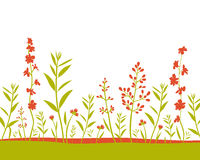Fields background. Fields flower and grass abstract background Stock Images