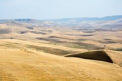 Fields in Basilicata, Italy Royalty Free Stock Photos