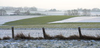 Fields behind a rugged fence in the winter Stock Image