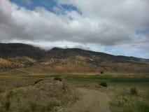 fields berg Arkivbild