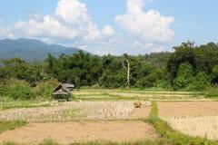 fields berg Royaltyfria Bilder