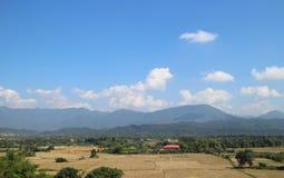 fields berg Royaltyfria Foton
