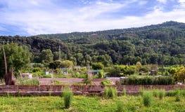 Fields of Besalu Royalty Free Stock Image