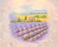 Fields of the blossoming lavender in Provence. A list on a room Stock Image