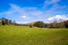 Fields in Bolton Abbey. Beautiful scenery and blue sky in Bolton Abbey, Wharfedale, North Yorkshire, UK Royalty Free Stock Photos