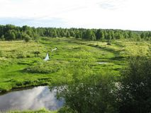 Boundless green spaces. The fields are boundless expanses and the beauty of forests and rivers. Striving for greatness Royalty Free Stock Photo
