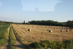 Fields of Bourgogne Royalty Free Stock Image