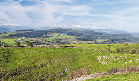 Fields of Cantabria Stock Photo