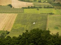 Fields of cereals and vineyards. At Fruska Gora in Vojvodina - Serbia royalty free stock images