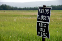 Fields Closed Sign -- Birds only Royalty Free Stock Photography