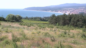 Fields on the coast, Bulgaria. Bulgaria - occupies a leading position among the Balkan countries on the cultivation of grapes and sunflowers, the production of stock video footage