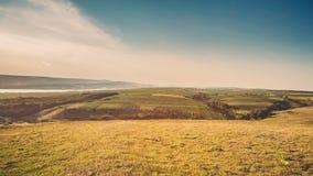 Fields colorfull Стоковая Фотография