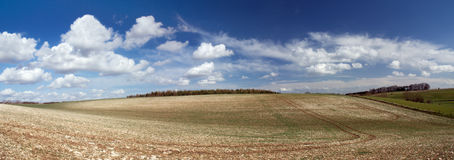 Fields in Cotswold. England Royalty Free Stock Photos