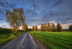 Between fields. Country road between fields in late summer time Royalty Free Stock Photos