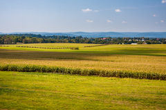Fields, Crops and Hills at Gettysburg Stock Photo