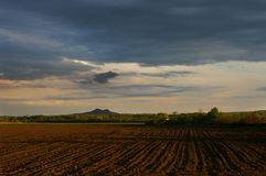 Fields of the Danube Valley Royalty Free Stock Images