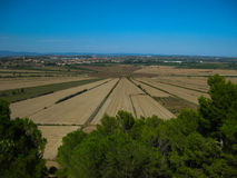 Fields in a dehydrated lake. In france Royalty Free Stock Photography